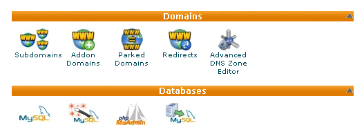 Domain management using cPanel